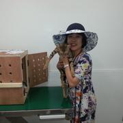 ~Grace Voyager 日本に到着~
